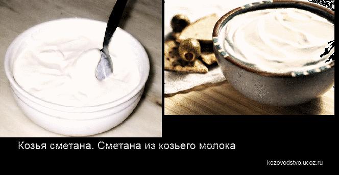 Сметана из молока в домашних условиях с фото